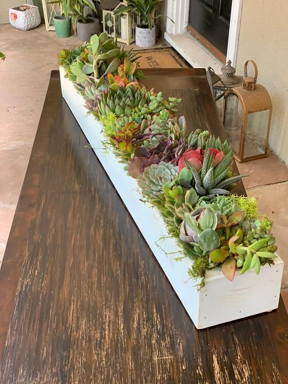 Holiday Table Succulent Centerpiece Long Handcrafted Wood Box Holiday Home Decor Low Prof Dining Table Centerpiece Succulent Centerpieces Table Centerpieces