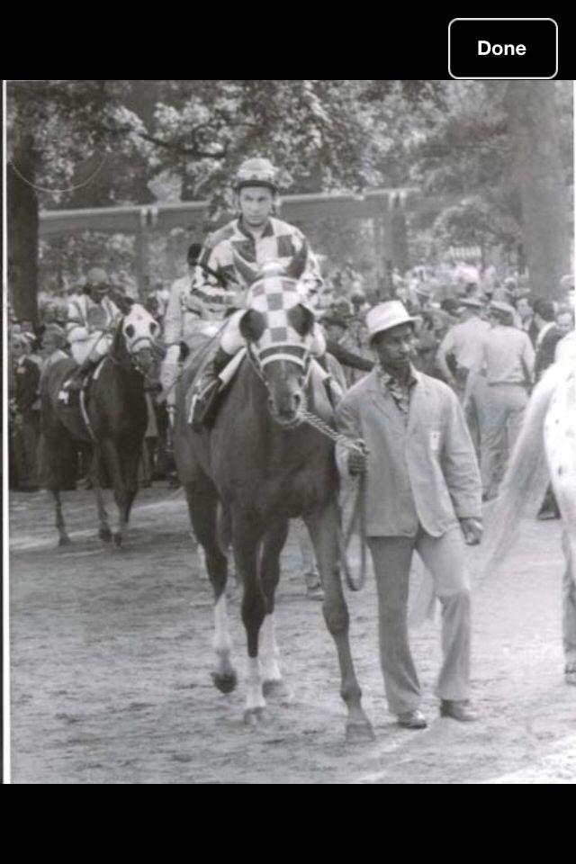 1660 Best Superhorse Secretariat 1973 Triple Crown