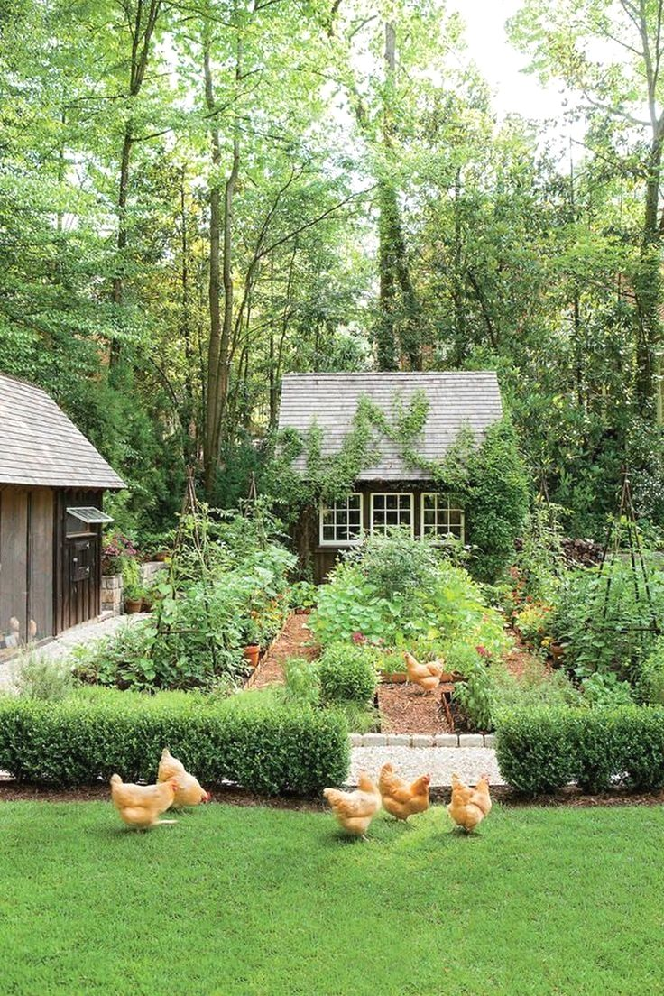 You Should Be In A Position To Access Your Small Backyard Garden Designs From All Possible Factors That S About Sma Dream Garden Garden Layout Backyard Garden