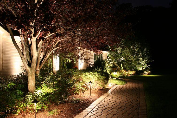 Image result for garden lighting ideas