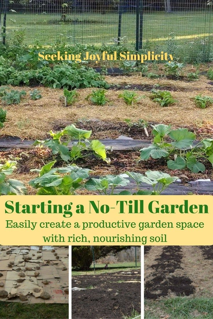 1000+ Images About ~{ Gardening & Outdoors }~ On Pinterest