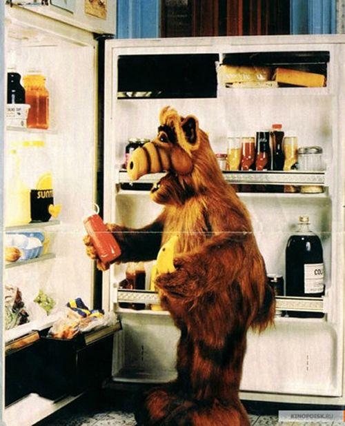 I miss Alf.