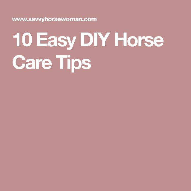 10 Easy DIY Horse Care Tips