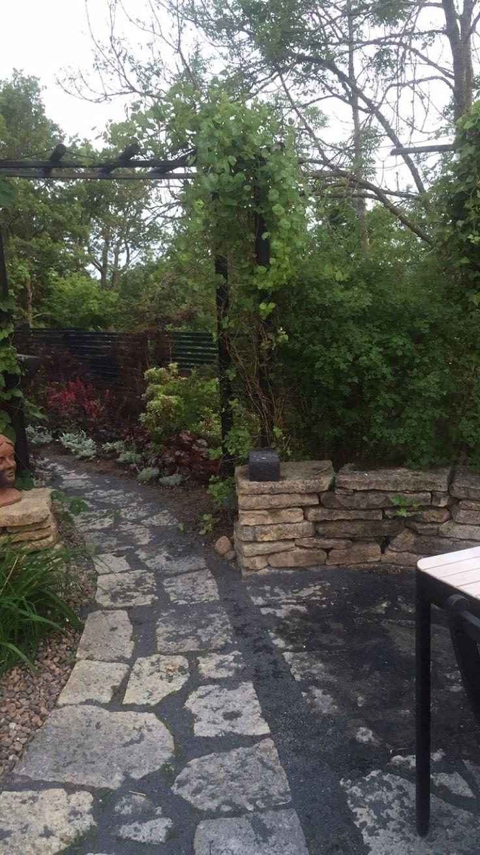 Min bakgård efter regn.