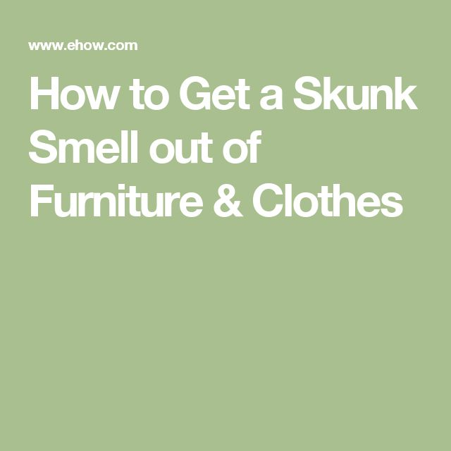 How to Get a Skunk Smell out of Furniture & Clothes