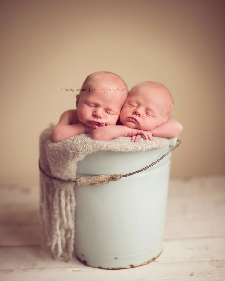 newborn photographer, baby twins photography