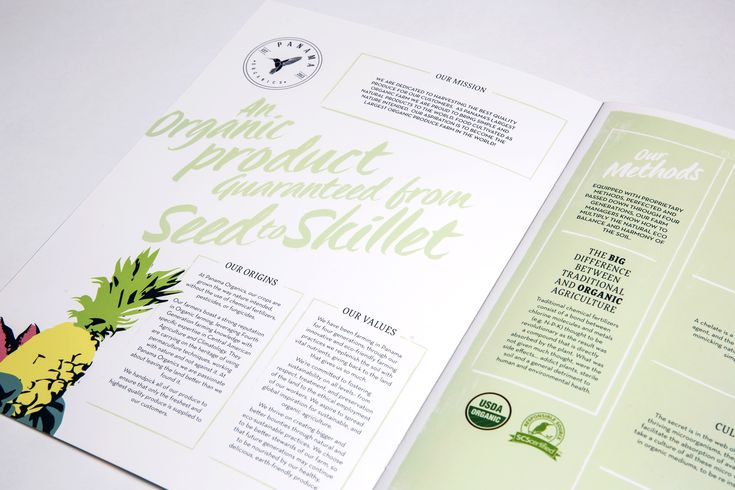 Inside spread of exotic catalogue design for tropical fruit wholesaler