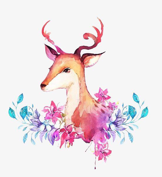 Deer watercolor. Clipart png