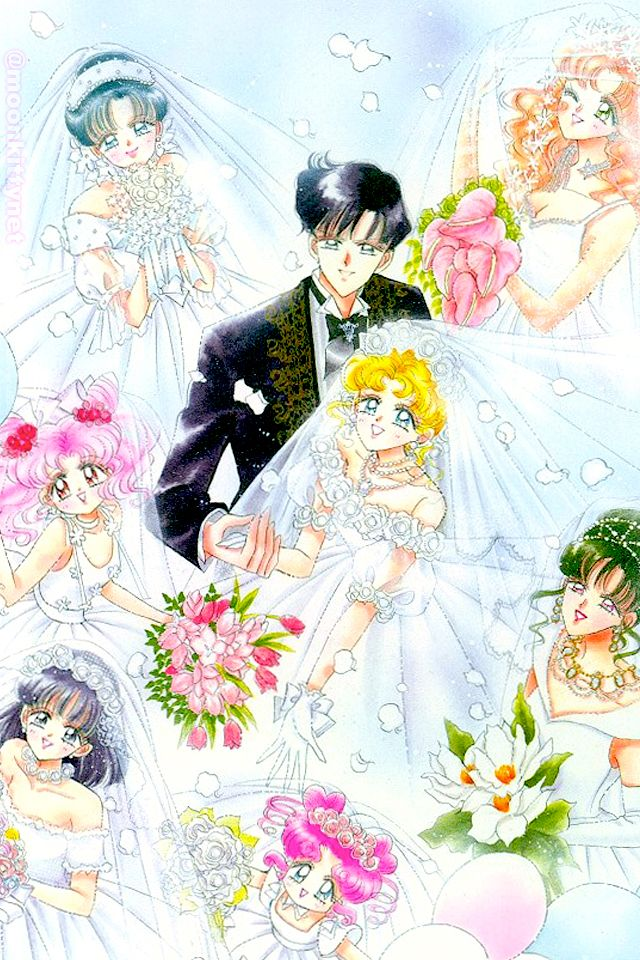 sailor moon's Wedding!