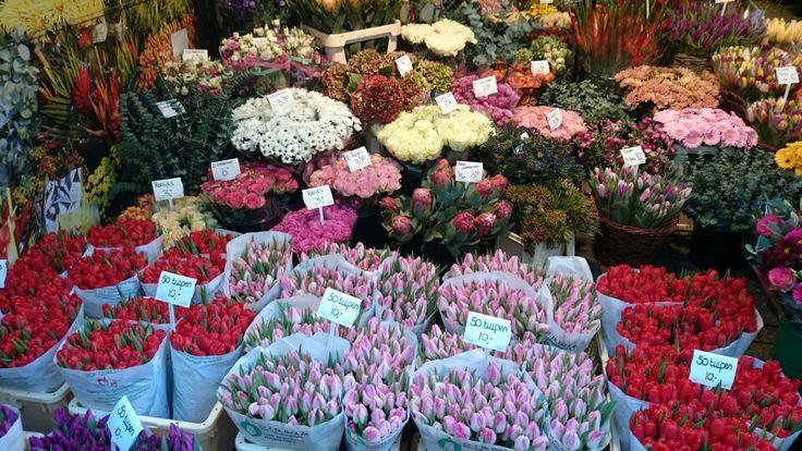 Blumenmarkt, Amsterdam