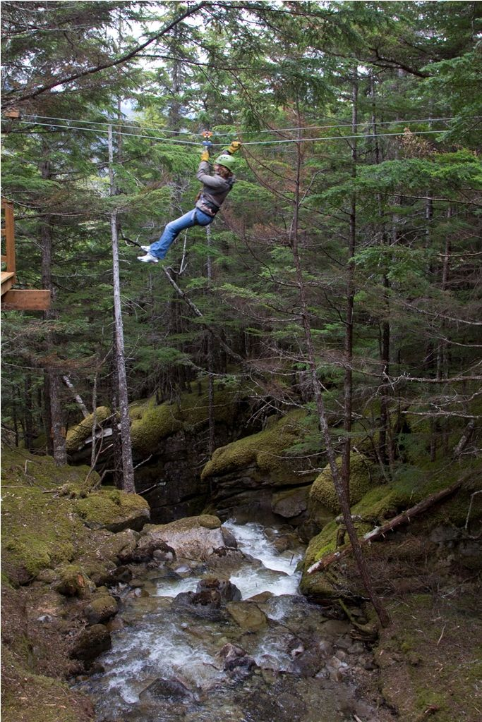 Ziplining in Alaska!    Grizzly Falls