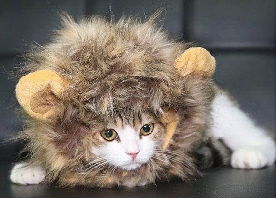Cat Lion Mane tan and beige cat lion hat cat costume by The360Shop