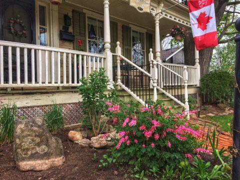 New front garden (spring 2015)