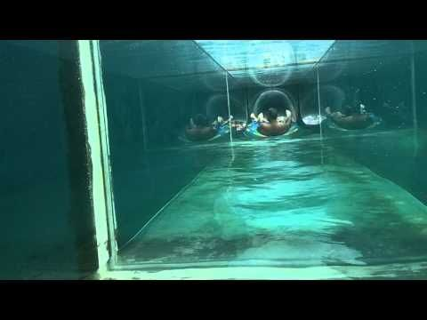Going Down Serpent Slide at Atlantis (Bahamas)