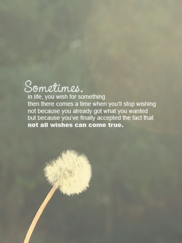 Wishes Do Come True Quotes: Not All Wishes Come True...just Live With It