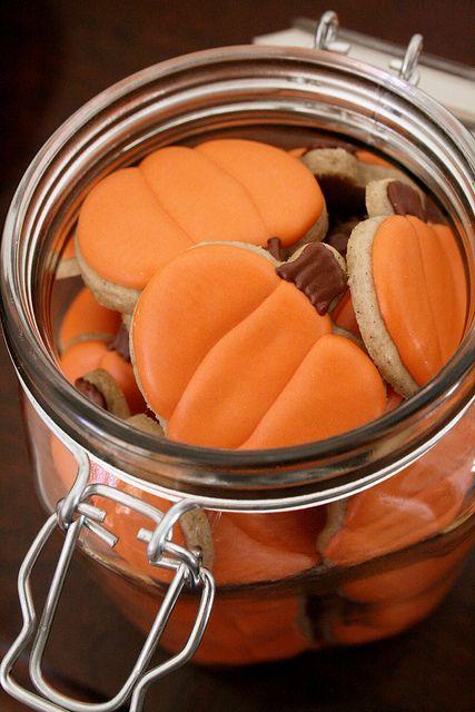 Pumpkin Spice Sugar Cookies!