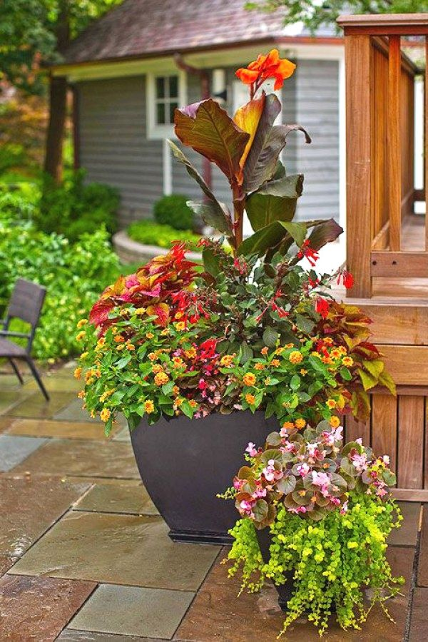 12 Awesome Container Garden Designs you might consider for your