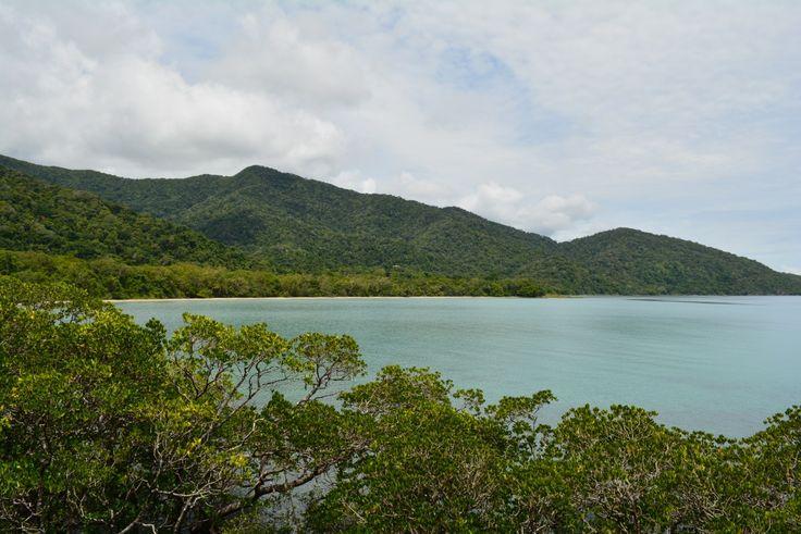 Travel Guide | Daintree National Park | Where Rainforest meets the Reef  #travel #australia #queensland
