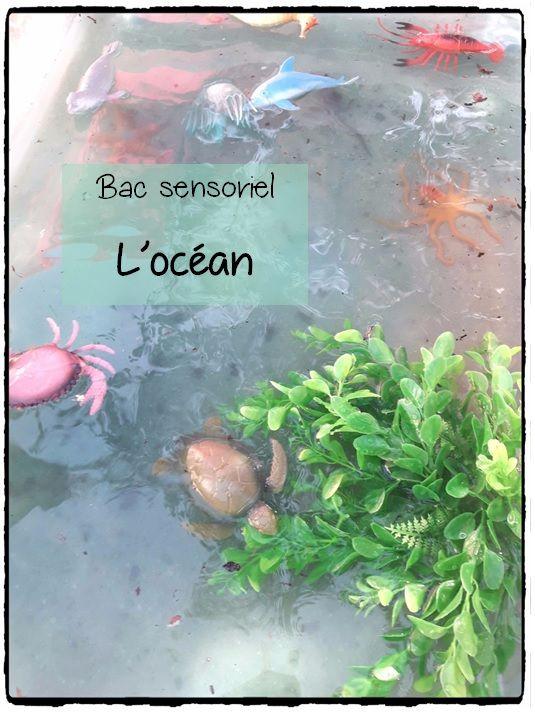 bac sensoriel sur l'océan, animaux marins, bac sensoriel sur la mer, activités sensorielles pour les enfants
