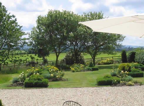 A View in Dorset