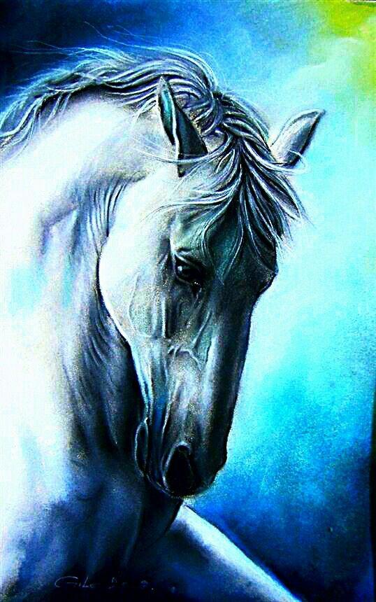 Cavalo Branco-01