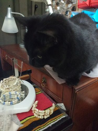 beading assistant!