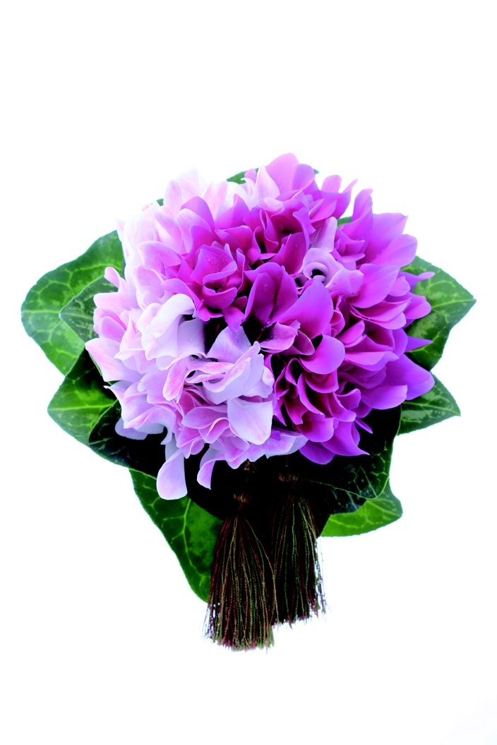 """We selected beautiful bouquets which is appropriate in """"Wakon"""" from 5th issue. (photographer  Masaaki Hiraga) and more; http://www.amazon.co.jp/%E6%97%A5%E6%9C%AC%E3%81%AE%E7%B5%90%E5%A9%9A%E5%BC%8F-No-5-%E5%AE%9F%E7%94%A8%E7%99%BE%E7%A7%91-%E3%82%A6%E3%82%A4%E3%83%B3%E3%83%89%E3%82%A2%E3%83%B3%E3%83%89%E3%82%B5%E3%83%B3/dp/4408631973/?qid=1403586052&s=books&ref=sr_1_48&ie=UTF8&sr=1-48"""