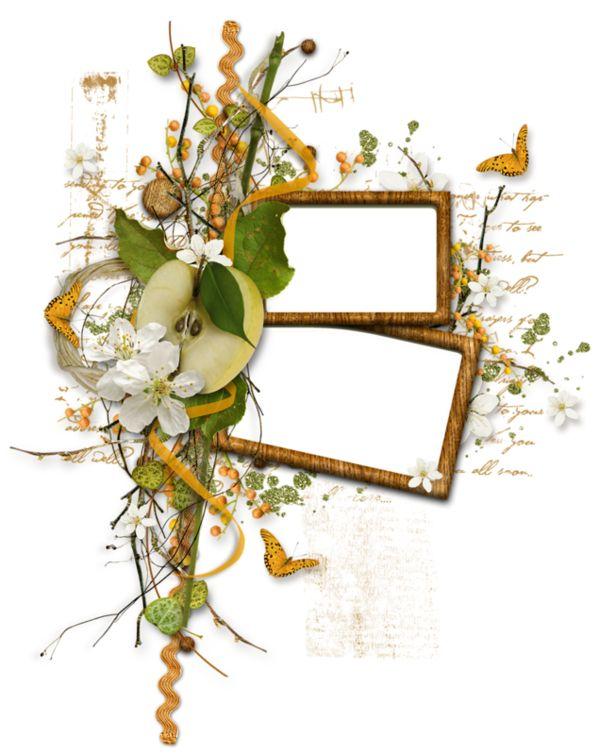 87 best images about png on pinterest floral image vector and graphics. Black Bedroom Furniture Sets. Home Design Ideas