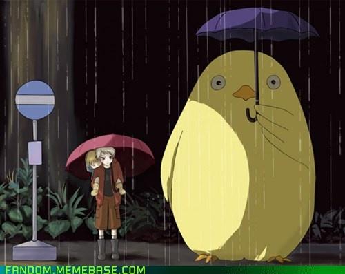 Awww, I love this!!! <3 <3 <3 Gilbird as Totoro, and Prussia holding little Germany! #Hetalia #MyNeighborTotoro