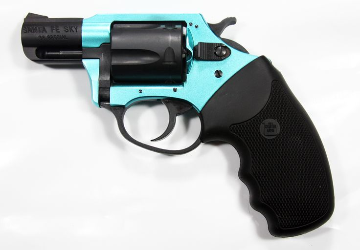 Santa Fe Charter arms .38 special saw it at a gun shop today it ws $ 398 it's just like my pink one