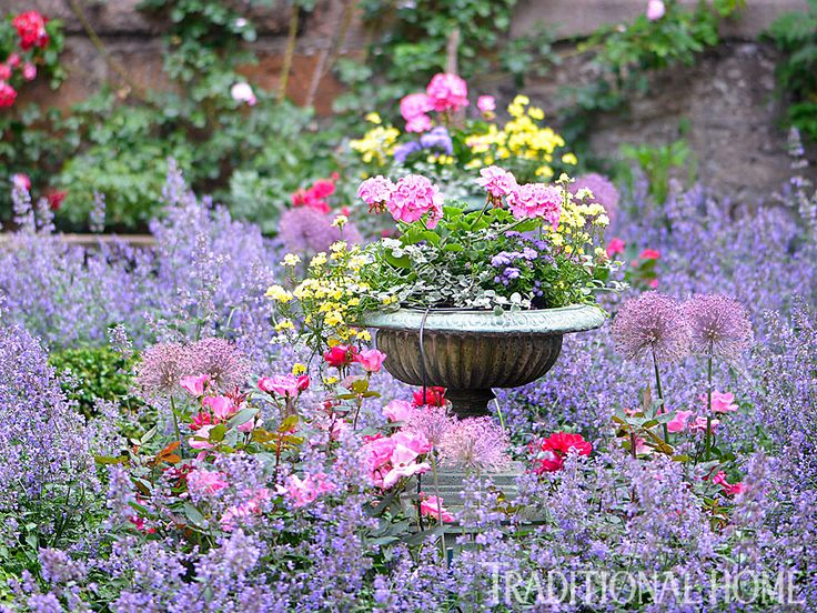 Flower Garden Ideas With Roses best 25+ small english garden ideas only on pinterest | cottage