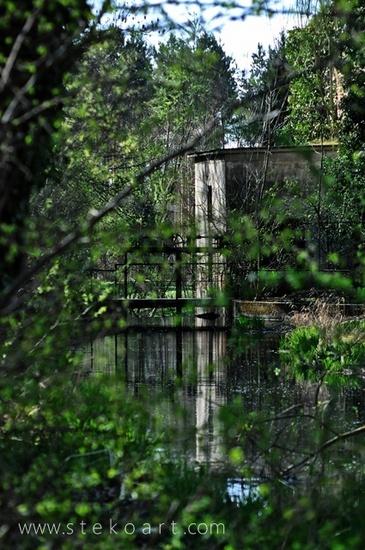 Arboretum, Szombathely