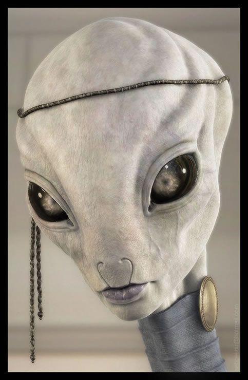 Pixologic ZBrush Gallery: Starwars Kaminoan (wip)