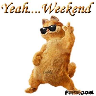 Funny Weekend Quotes and Sayings   funny weekend quotes. So spend your weekend doing