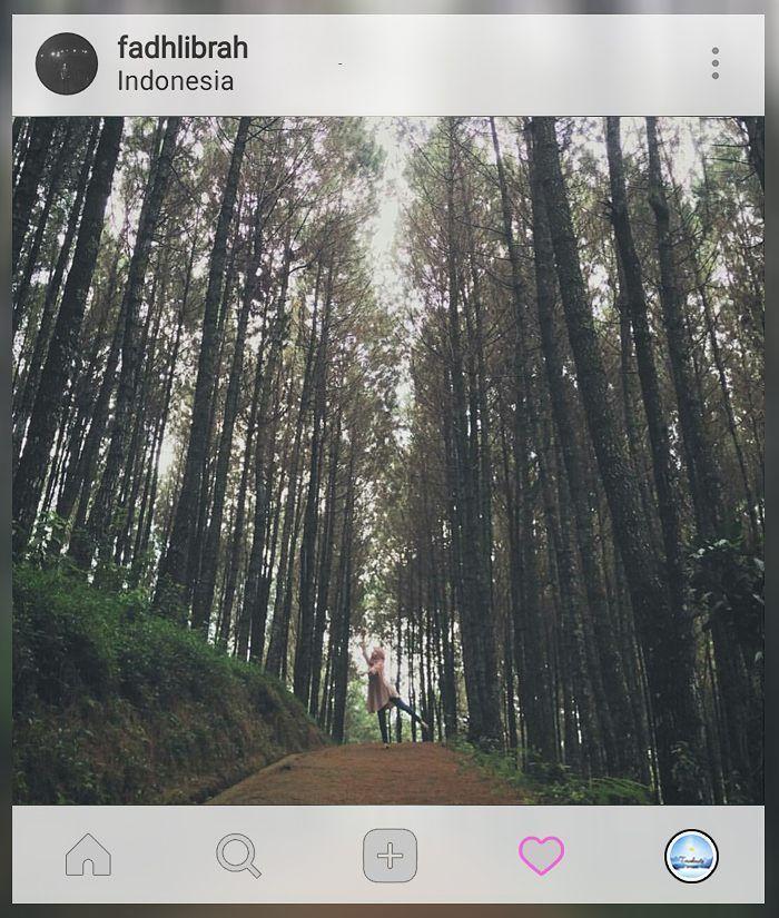 Let the forest set u free..   Loc: #Bandung    Kebayang ga sih kalo jalan-jalan kamu dibikin kegiatan #TravelGame yang menarik dan unforgetable? Ga cuma dateng foto lalu pulang gitu aja. Yuk cek  www.travelmate.today/travelgame untuk detailnya   Tag #travelmate kamu  #outing #gathering #traveling Travelmate Today IndonesiaTravelmate Today Indonesia