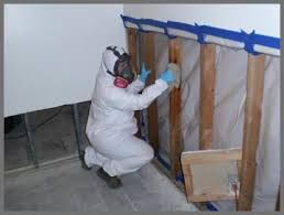 Professional Black Mold Testing Miami Beach Specialist services should only be conducted by an industry-certified and experienced company with the background and merits that promote consistent quality. The inspectors at mold experts have the expertise needed to properly conduct mold and allergen sampling, leak detection, moisture testing and other condition assessment services at your property. More Details: http://miamimoldspecialist.com