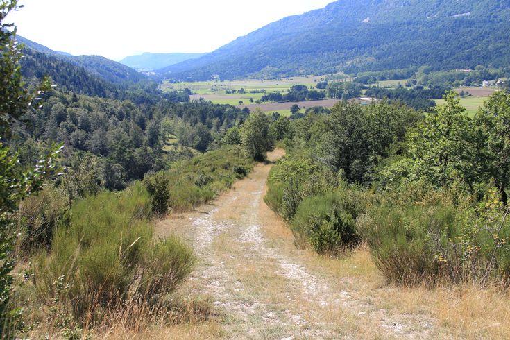 Randonnée dans la forêt de Thorenc (06)