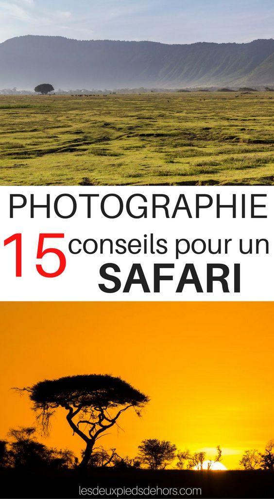 15 conseils photo pour réussir son safari_photographie