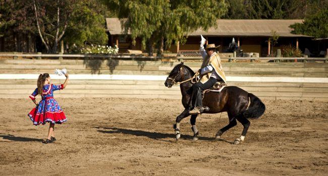 La cueca a caballo, una tradición huasa!