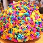 Разноцветные розы (Радужные розы или Rainbow flowers). Мастер — кла