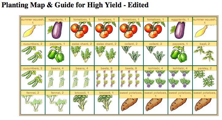 Miraculous Raised Vegetable Garden Layout 4x8 on Garden ...