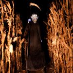 My friends want to go to a haunted corn maze this year... im not too sure.. i might pee my pants..