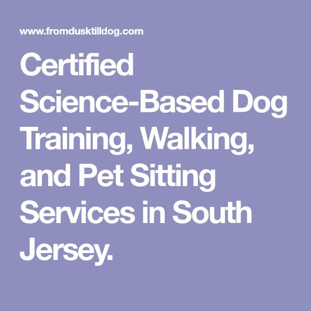 The 25+ best Pet sitting services ideas on Pinterest Dog walking - service contract