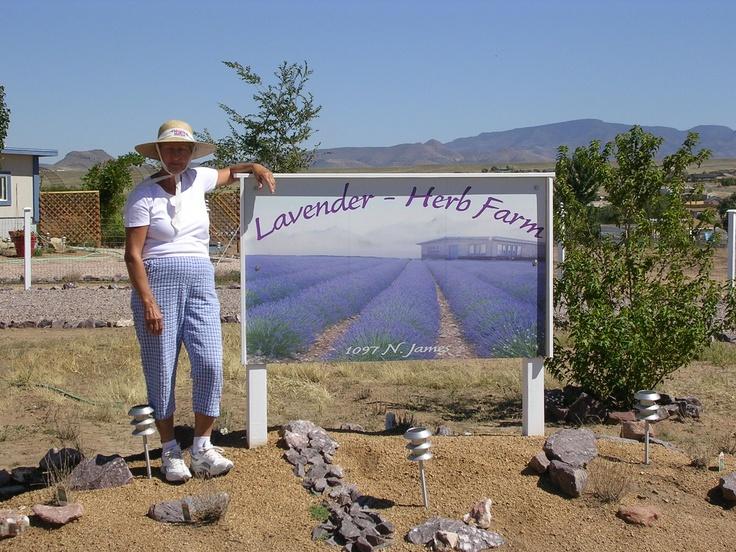 Lavender Herb Farm & Tea House