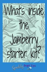 What's inside the Jamberry starter kit? Take a peek at this blog post to find out more.