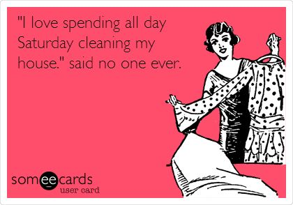'I love spending all day Saturday cleaning my house.' said no one ever.