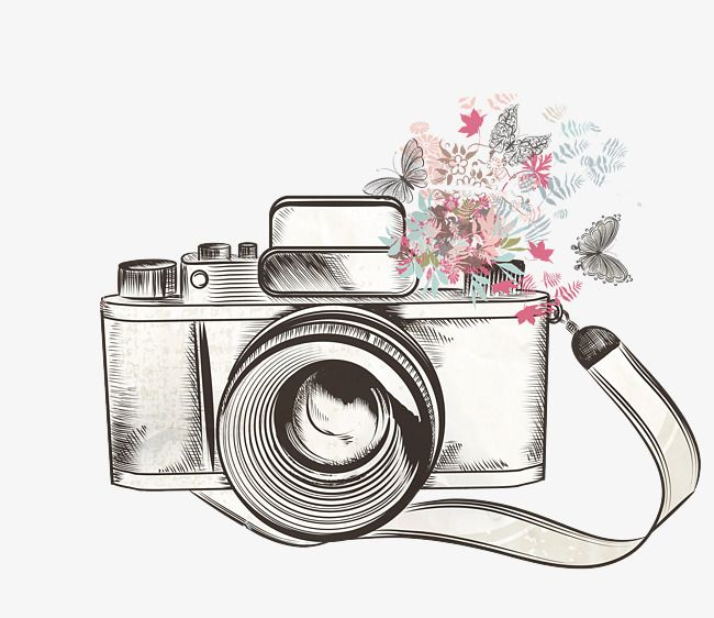 Flower Camera Png And Clipart Camera Drawing Camera Art Camera Illustration