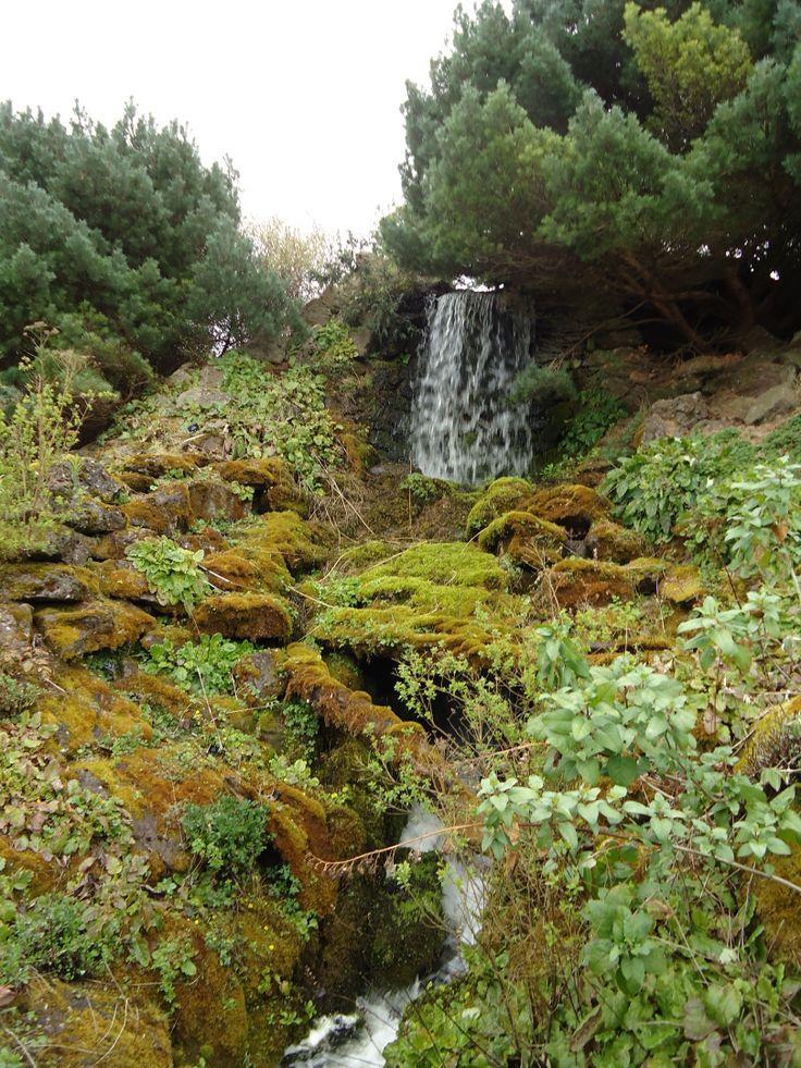 42 Best Royal Botanic Garden Edinburgh Images On Pinterest Edinburgh Nature And Backyard Patio