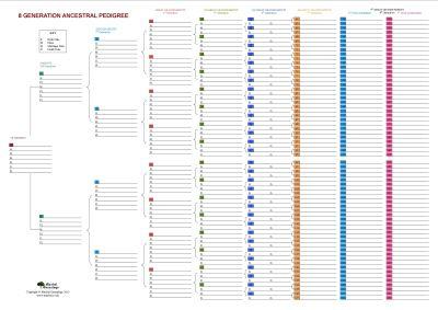 8 Generation Family Tree Chart                                                                                                                                                                                 More