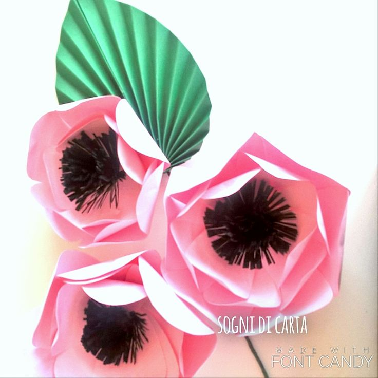 Paper anemon